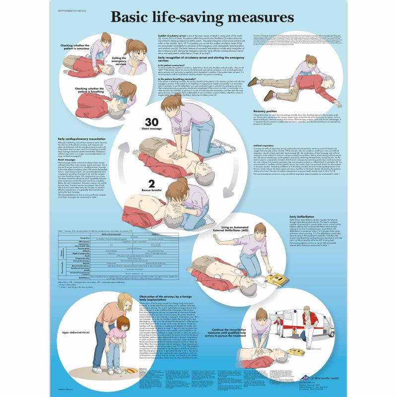 All Products - Wandkaart: Basic life support